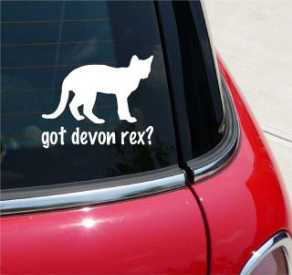 GOT DEVON REX? CAT GRAPHIC DECAL STICKER VINYL CAR WALL