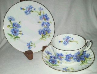 Adderley Fine Bone China Trio Plate Cup Saucer Cornflower Blue