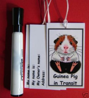GUINEA PIG PAINTING CARRIER TAGS & PEN SUZANNE LE GOOD