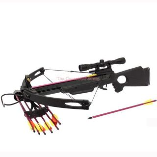 compound crossbows in Crossbows
