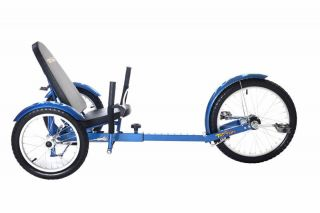 NEW BLUE 3 WHEEL LOW RIDER BICYCLE BIKE TRICYCLE