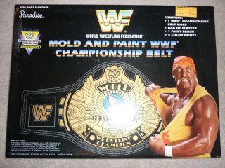 and Paint Championship Belt w/Hulk Hogan Action Figure Box Graphic wwe