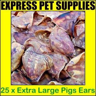 25 x EXTRA LARGE Pigs Ears Dog Treat Reward Chew Food Snack