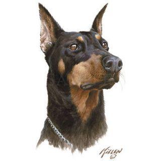 Doberman Pinscher Dog James Killen Artwork Portrait Profile White T