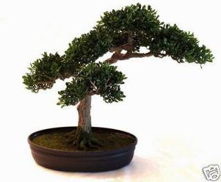 ARTIFICIAL BOXWOOD PLANT BONSAI TREE HOME DECOR CHRISTMAS GIFT