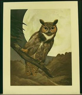 Ray Harm GREAT HORNED OWL 24x 20 signed and numbered never