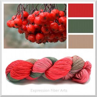 MOUNTAIN ASH BERRIES HandPainted Superwash Merino Wool Sock Yarn   3.5
