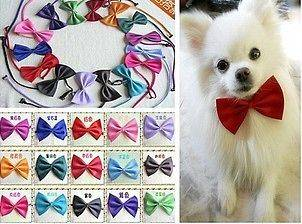 10PCS New Dog Cat Pet Collar ACCESSORY Bow tie necktie