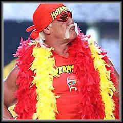 HULK HOGAN moustache bandana t shirt feather boas sunglasses COSTUME