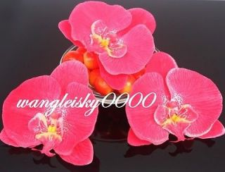 12pcs hot pink silk flower butterfly orchid heads wedding party