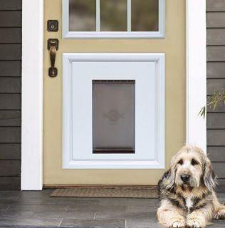 PETSAFE PANEL PET DOG DOOR INSERT IN GRAY RPA00 12510
