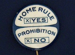 campaign pin pinback button political badge election PROHIBITION