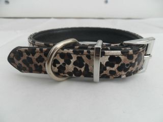 leopard dog collars in Collars & Tags