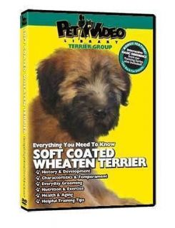 dog training dvd in DVDs & Movies