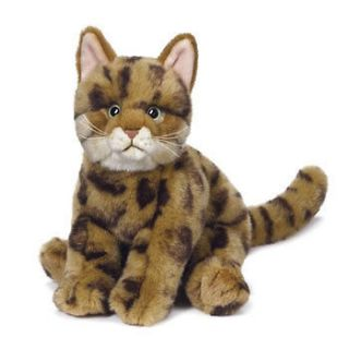 Webkinz Virtual Pet Plush   Signature Series   BENGAL CAT (12 inch)
