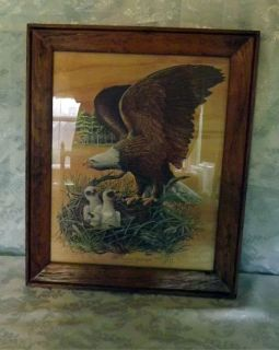 The American Bald Eagle Print by Robert Nipp Signed Rustic Wood Frame