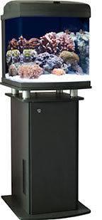 gallon fish tank stand in Aquariums