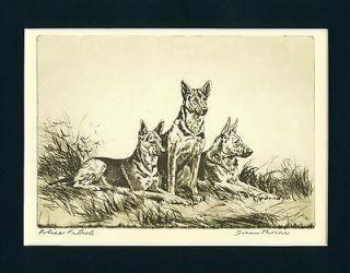 Dog Print 1935 German Shepherd Police Patrol Dogs by Diana Thorne