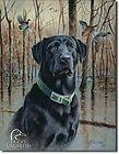 WALLPAPER BORDER 45ft DUCKS UNLIMITED LAB PUPPIES DUCKS
