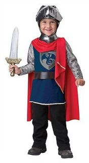Gallant Knight Costume Child Toddler *New*