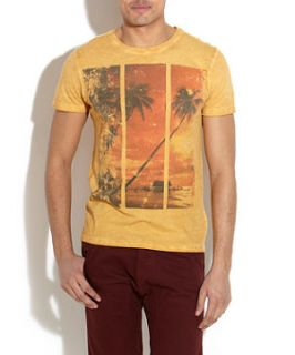 Yellow (Yellow) Yellow Sunset Beach T Shirt  248115485  New Look