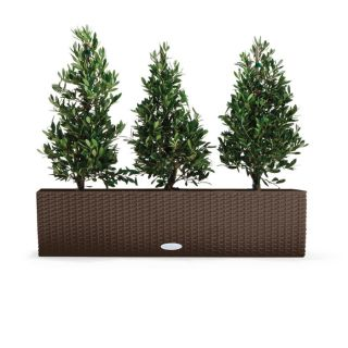 Balconera Self Watering Window Box at Brookstone—Buy Now