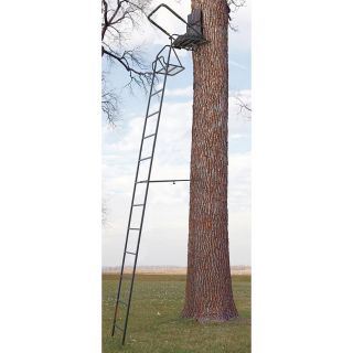 Guide Gear 16 Deluxe Ladder Tree Stand   546776, Ladder Tree Stands