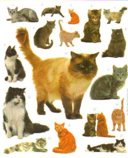 Collectibles  Animals  Cats  Decals & Stickers
