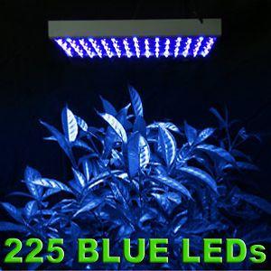 indoor plant hydroponic light
