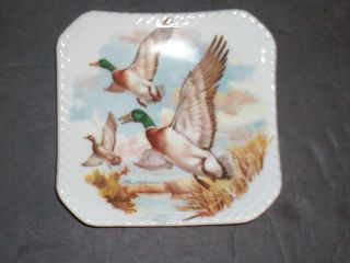 Adderley Floral Fine Bone China England ~ Left Flying Mallard Nut Dish