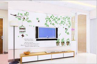 New Bird Potted Plants Birdcage Vine Wall Sticker Decor Decals Art