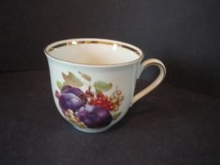 Schumann Orchard plums grapes pattern Tea Cup Arzberg Germany Bavaria