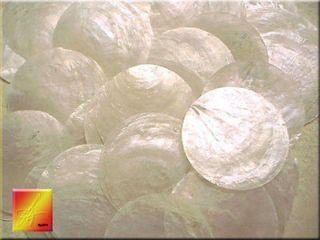 50 capiz shells 3 round two holes seashells craft time