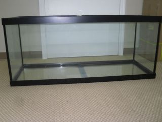 Unique 75 Gallon Aquarium Fish Tank