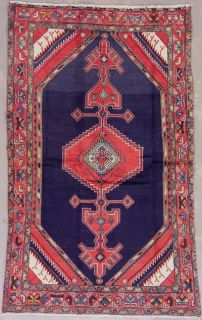 Persian SERAPI Hand Knotted Wool Area Rug Carpet with Abrash
