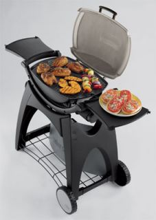 Weber Cooker Cook Grills Grill Barbecue BBQ Gas Portable Indoor