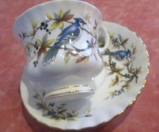 STUNNING ROYAL ALBERT TEA CUP & SAUCER BLUE JAY BONE CHINA ENGLAND