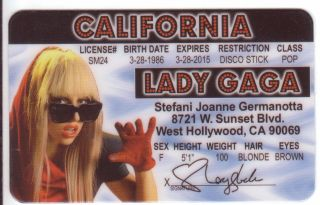 Pick Rock Star Lady Gaga Pink Amy Winehouse or Bella Swan Fun Costume