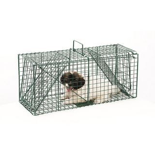 Pet Trex Green Live Animal Trap Racoon Skunk Cat Traps Over 26 inches