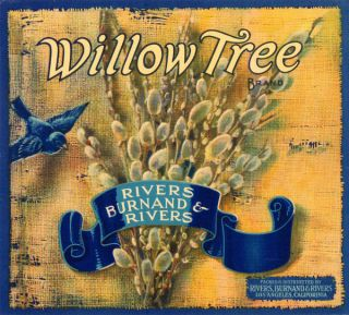 Willow Tree Vintage Fruit Crate Label Los Angeles CA