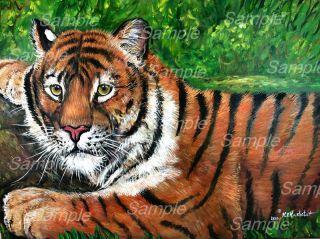 Tiger Painting Wildlife Big Cats Zoo Kristine Kasheta Art