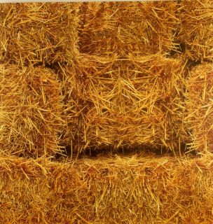DCWV Scrapbook Paper HAY BALES FIELD STRAW HARVEST FALL 1  12X12 Page