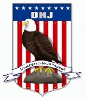 DNJ Engine Components PR312 Engine Piston Ring Set