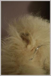 Vintage 70s 80s Fluffy Genuine White Arctic Fox Fur Coat Full Length L