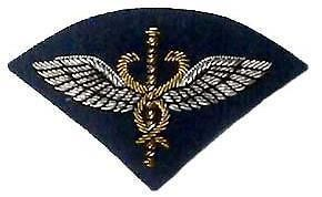 raf flight medical badge for royal air force mess dress
