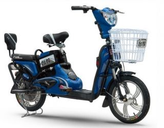Tailg Electric Bicycle E Bike Scooter TDR333Z 48V 350W No Drivers