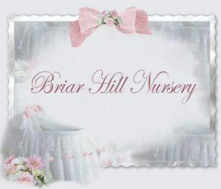 REBORN NEWBORN DOLL *LISANN* BY SABINE ALTENKIRCH  NO RES! BRIAR HILL