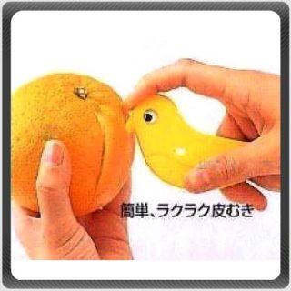 Bird Multi Purpose Beak Orange Peeling Barker Zester