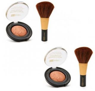 Set 2 Black Radiance Artisan Color Baked Bronzer Powder Brush Set