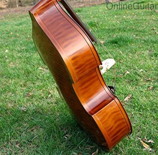 Artist Model Upright Bass Fiddle Bluegrass Dream